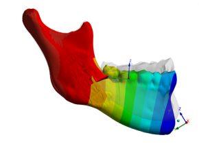 Simulation numérique du corps humain